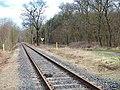 Dessau-Wörlitzer Eisenbahn im Biosphärenreservat Mittlere Elbe bei Oranienbaum-Wörlitz - panoramio (1).jpg