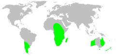 Distribution.migidae.1.png