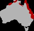 Distribution map of Cressida cressida in Australia.png
