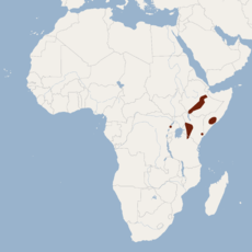 Distribution of Epomophorus minimus.png