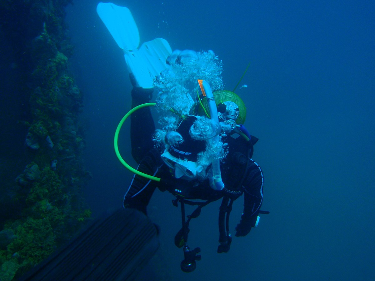 Scuba set wikipedia for Dive system tech fin