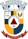 Divisópolismgbrasao.png