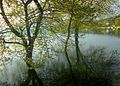 Dojran Lake 137.JPG