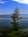 Dojran Lake 251.jpg