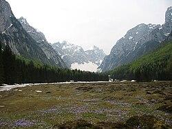 Dolina Krma Julijske Alpe Slovenia.JPG