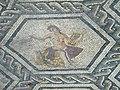 Domus chirurgo mosaici 10.jpg