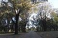 Dubbo NSW 2830, Australia - panoramio (182).jpg