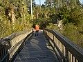 Dutton Island - panoramio.jpg