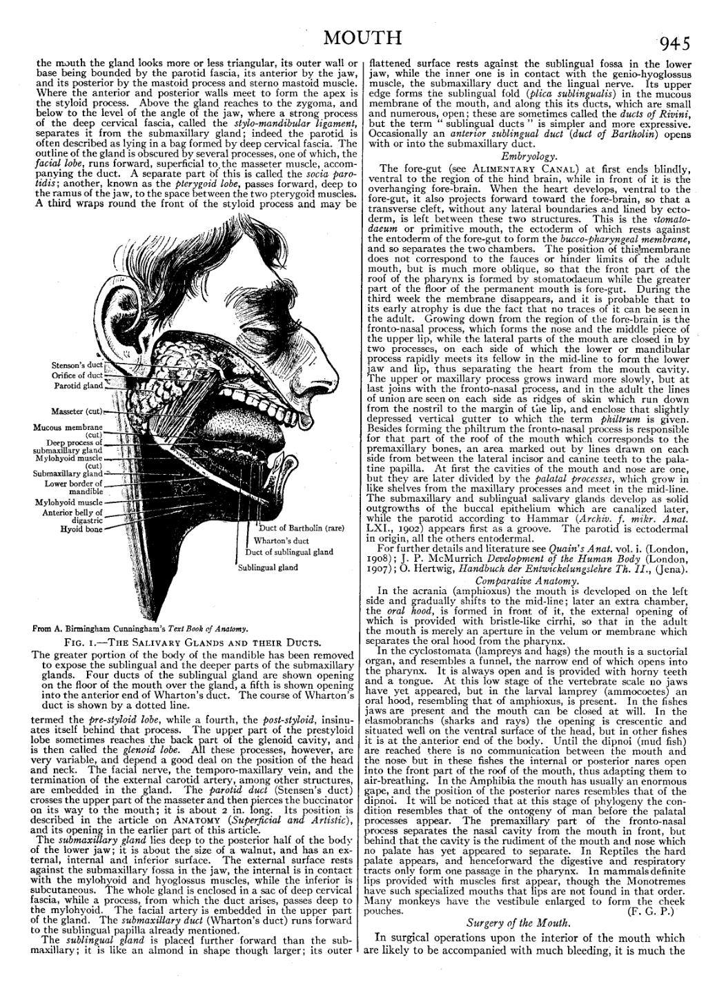 Page:EB1911 - Volume 18.djvu/977 - Wikisource, the free online library