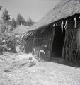 ETH-BIB-Abessinier vor einer Strohhütte-Abessinienflug 1934-LBS MH02-22-0276.tif