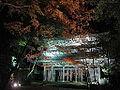 Eigenji sanmon 2014-11-25.JPG