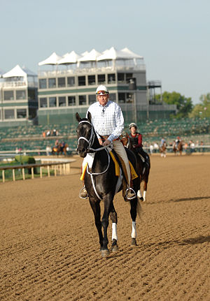 Eight Belles - Eight Belles being exercised by Jones at Churchill Downs, May 1, 2008