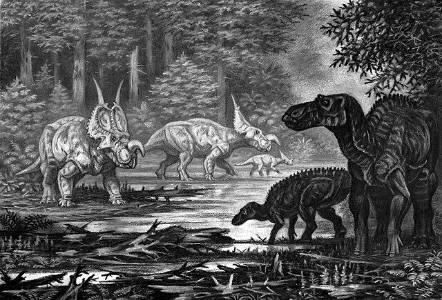 640px-Einiosaurus_and_Maiasaura.jpg