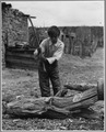 El Cerrito, San Miguel County, New Mexico. Firewood is used in considerable quantities all through . . . - NARA - 521191.tif