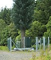 Electronic Tree - geograph.org.uk - 484693.jpg