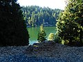 Emerald Lake or Toad Lake near Bellingham (35545399554).jpg