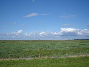 Saeftinghe - Image: Emmadorp Verdronken Land van Saeftinghe 2
