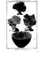 Encyclopedie volume 5-147.png