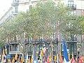 Enric Batlló P1150788.JPG
