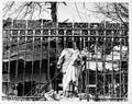 Estatua de la Virgen del Carmen, semidestruida por la explosión del 7 de agosto & 402250.JPG