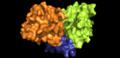 Estrutura da NDH-2 colorida por domínios.png