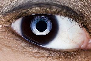 Ring flash - Image: Eye full