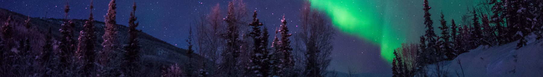 Fairbanks banner northern lights.jpg