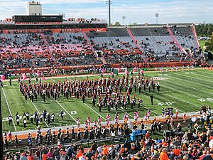 Falcon Marching Band.jpg
