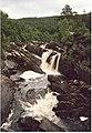 Falls of Rogie from the Bridge - geograph.org.uk - 949157.jpg