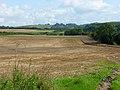 Farmland, West Knoyle - geograph.org.uk - 975485.jpg