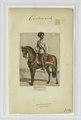 Feld-Marschall. 1866 (NYPL b14896507-90535).tiff