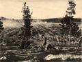 FellmanFieldPrisoners1918.jpg