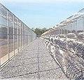 Fence of Prison-BPO.jpg