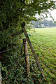 Field fingerpost and barbed wire fence, Nuthurst, West Sussex, England.jpg