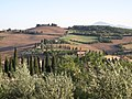 Fields in Southern Tuscany - panoramio.jpg