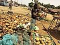 Fille enlevant la peau d'une noix de coco a l'aide d'un Coupe-coupe pour servir un client au Bénin.jpg