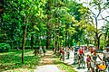 Final de semana no parque ibirapuera.jpg