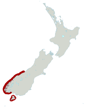 Fiordland Penguin distribution map.png