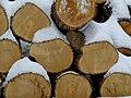 Firewoodwinterscape.jpg