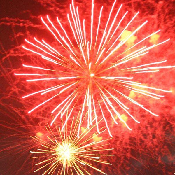 600px-Fireworks_Bonfire_Night_2007_1.jpg