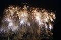 Fireworks in Edogawa, Tokyo; August 2008 (03).jpg