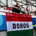 Flag and fans from Dorog in the European Cup 2016 in French.jpg