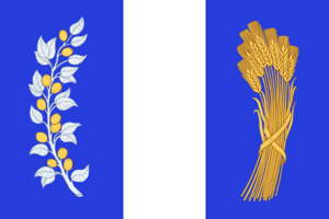 Bichursky District - Image: Flag of Bichursky rayon (Buryatia)