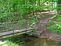 Footbridge in Ladderedge Country park - geograph.org.uk - 452278.jpg
