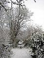 Footpath, Westbury-on-Trym - geograph.org.uk - 1628144.jpg