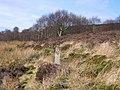 Footpath Sign on the Moors near Ffynnon Thomas - geograph.org.uk - 351821.jpg