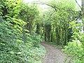 Footpath alongside Hilsea Lines between Peronne and London Road - geograph.org.uk - 776820.jpg