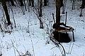 Forest IMG 1857 1 (8511256745).jpg