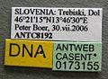 Formica lugubris casent0173155 label 1.jpg