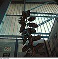 Fotothek df n-30 0000464 Bauglas Messehalle Suhl.jpg